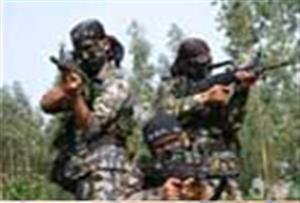 廣州黃埔金鷹拓展訓練基地-真人CS野戰場地