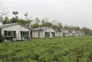 廣州花都香草世界拓展訓練基地-花海木屋別墅