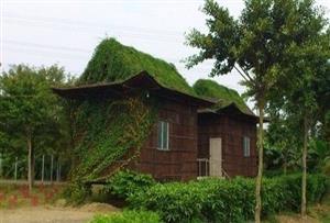 广州黄埔金星农庄拓展训练基地-基地环境介绍