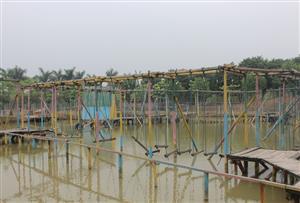 廣州南沙永樂農莊拓展訓練基地-南沙永樂農莊水上樂園介紹