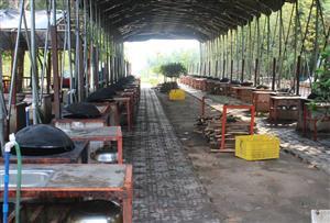 廣州黃埔陽光歡樂谷拓展訓練基地-野炊、燒烤場地介紹