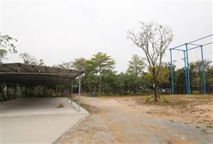 惠州惠陽亞維濃生態園拓展訓練基地-惠州惠陽亞維濃生態園基地-拓展訓練場地介紹