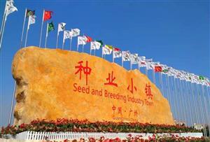 广州南沙嘉渔苑生态园拓展训练基地-周边景点简介-种业小镇