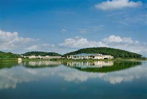 佛山高明富灣湖拓展訓練基地_千畝森林,天然氧吧,百畝湖泊,親近自然