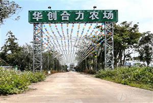 中山坦洲華創合力農場拓展訓練基地_集生態農業、親子、拓展、休閑度假于一體的一站式主題園