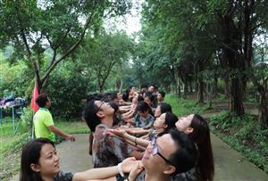 挑战自我,熔炼团队--郁南县平台镇政府拓展训练营