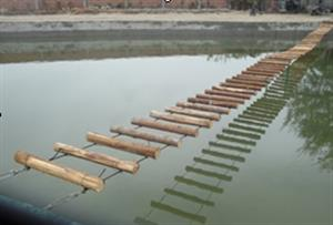 水上圆木桥拓展项目