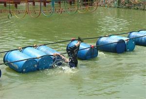 水上圆桶桥拓展项目